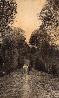 Ancienne allée du cimetière - Éditions Boisel