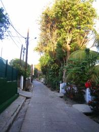 Allée actuelle du cimetière