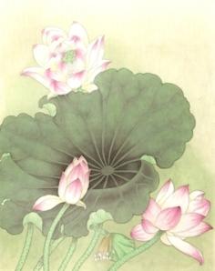 lotus 2