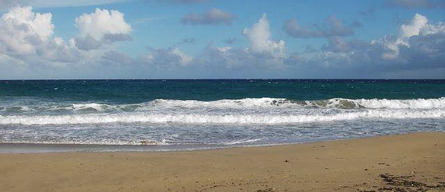 Plage de Grand'Anse à Terre-de-Haut- Photo Alain Joyeux