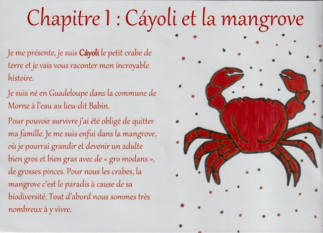 Cayoli 1