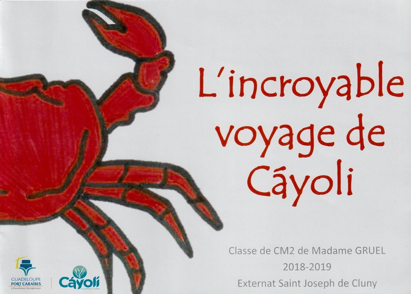 Cayoli 8